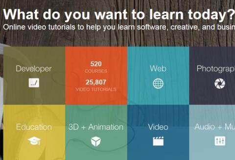 '자기주도 학습(Self-directed learning)'을 표방한 학습용 웹사이트들이 창업자들이 선호하는 신사업으로 크게 각광받고 있다. 사진은 학습용 웹사이트인 lynda.com/   ⓒ ScienceTimes