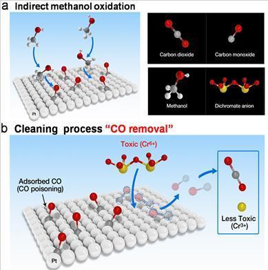 6가 크롬의 도입을 통해 일산화탄소 피독 현상이 제거되는 메커니즘 규명 ⓒ IBS