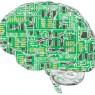 영장류와 경쟁하는 '인공지능'