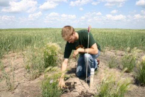 노스다코타 주립대학 연구진이 설립한 스타트업 '시투센서(c2sensor corp)'에서 실시간 토양 분석이 가능한 센서를 개발해 큰 주목을 받고 있다. 사진은 농지에서 센서 실험을 하고 있는 장면. ⓒhttp://www.newswise.com/