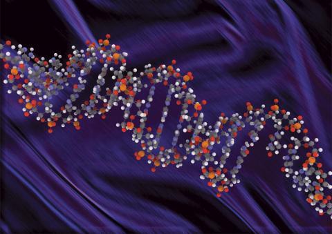 새로운 저장매체, DNA가 온다