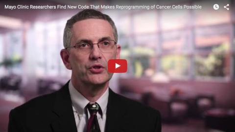 메이요 클리닉 플로리다 캠퍼스 아니스타시아디스 교수가 동영상을 통해 연구 결과에 대해 설명하고 있다.  Mayo Clinic News Network