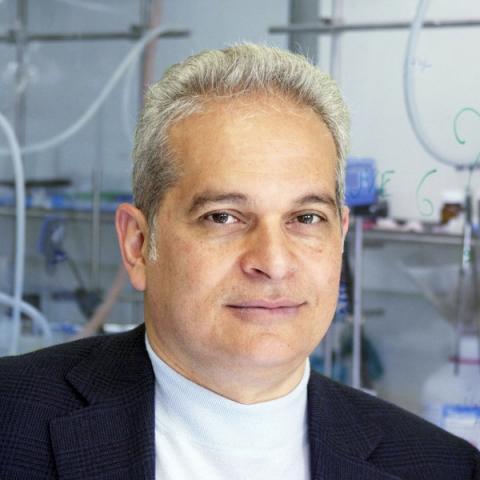 연구를 이끈 미국 캘리포니아 어바인대 신경과학부 '루이즈 터너 아놀드 석좌교수'인 다니엘레 피오멜리 교수.  ⓒ Amandine Nabarra Piomelli