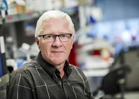피 생성이론을 재정의하는 연구를 이끈 캐나다 토론토대 교수이자 프린세스 마가렛 암센터(the Princess Margaret Cancer Centre) 시니어 과학자인 존 딕 교수 ⓒ UHN ⓒ UHN