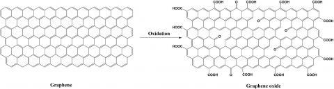 그래핀이 산화되면서 탄소 결합 사이에 산소가 끼어들어 가게 되는데, 이것이 바로 산화 그래핀이다.  ⓒ 김희원