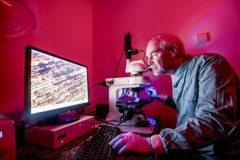 구리가 호흡기 바이러스를 퇴치한다는 연구의 공저자인 영국 사우샘프턴대 빌 키블(Bill Keevil) 교스. 키블 교수팀은 이전 연구들에서 구리의 항균작용을 입증한 바 있다.  ⓒ University of Southampton