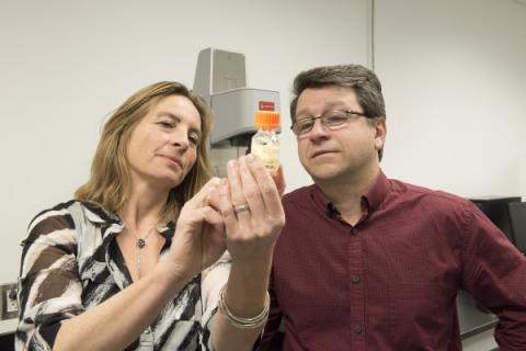 암 치료용 바이오겔을 개발한 소피 르루즈 교수와 라푸앵뜨 교수(오른쪽) ⓒ CRCHUM