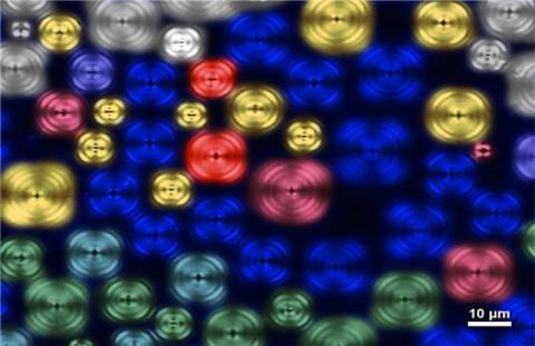 한국광학회가 주최한 2015년 세계 빛의 해 기념 빛 사진전 및 빛 이미지전에서 이미지전 부문 대상을 받은 '마이크로 바람개비'.  ⓒ 한국광학회