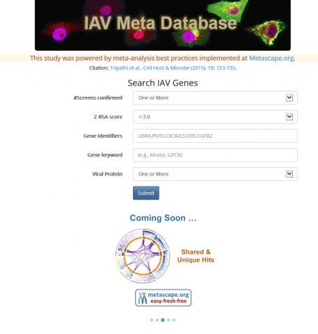 연구팀이 '독감 단백질' 발견을 공조하기 위해 개발해 공개한 웹사이트(www.metascape.org/IAV). 인터넷 캡처.