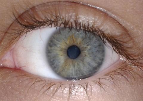시각정보를 통해 사람은 사유하기 때문에 '본다'는 행위는 상당히 중요하다.