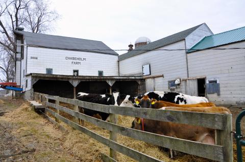 제레미 리프킨은 '육식의 종말'에서 '고기 1kg을 만들려면 콩 7kg이 필요하고, 햄버거 하나에 들어가는 고기를 만들려면 1.5평의 땅이 필요하다'고 말했다.