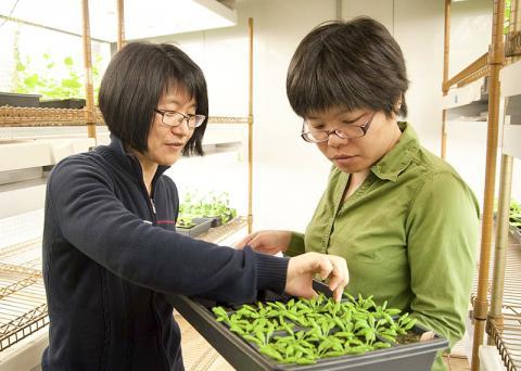 논문의 시니어 저자인 이정윤 교수(왼쪽)와 제1저자인 웨이어 퀴 박사후과정 연구원 ⓒ University of Delaware