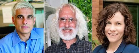 엔지니어링 T세포를 이용한 췌장암 면역치료법을 연구한 수닐 힝고라니, 필 그린버그 , 잉건 스트롬니스 박사(왼쪽부터). 사진 프레드 허친슨 암센터. ⓒ ScienceTimes