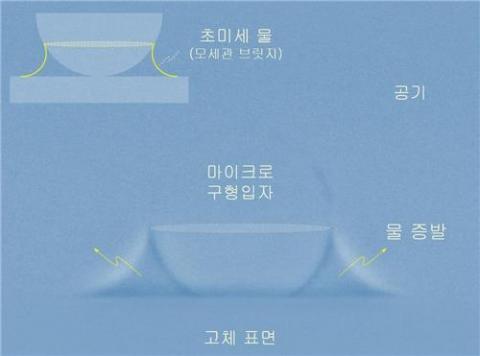 초미세 물 증발 장면. 마이크로 구형입자와 고체 기판의 표면 사이에 순간적으로 존재하는 초미세 물 모세관 다리의 증발을 초고속 엑스선 나노영상으로 찍은 사진.  ⓒ 성균관대