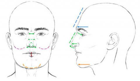 이번 연구에서는 중남미 사람 6000여 명의 얼굴 정면사진과 측면사진에서 14가지 특징을 측정해 이들 게놈의 SNP 분석 데이터와 통계처리해 각 특성에 관여하는 SNP를 찾았다. 자세한 설명은 본문 참조. ⓒ 네이처 커뮤니케이션스