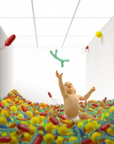어린이 장내 미생물군이 자가면역질환에 큰 영향을 미친다는 광범위한 실증적인 연구가 나왔다.  ⓒ Aalto University