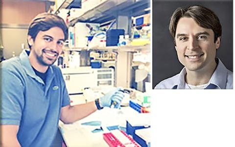 연구를 수행한 조지프 바우어 교수(오른쪽)와 논문 제1저자인 데이비드 프레데릭 박사(왼쪽). 사진 The Baur Lab ⓒ ScienceTimes
