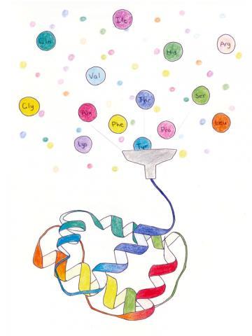 """엄마는 '잔소리'하면 딸은 받아 그림으로 그려냈다. 딸 홍영진 학생이 그린 책의 삽화 '아미노산을 모아 단백질을 만드는 생명체의 질서 만들기""""."""
