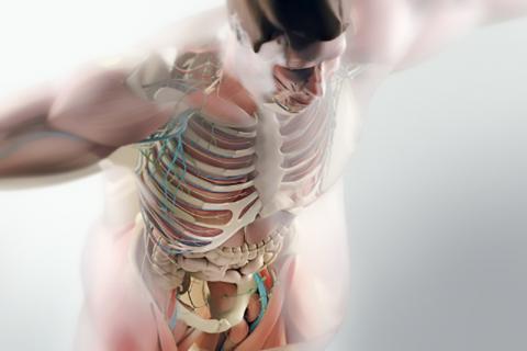 WHO 분석을 토대로 과체중과 비만이 8개의 추가적인 암 발생 위험을 높인다는 연구가 발표됐다. 전문가들은 몸무게가 늘지 않도록 조절하면 이 같은 암 발생 위험을 줄일 수 있다고 말한다. 사진 Thinkstock/Eric Young ⓒ ScienceTimes