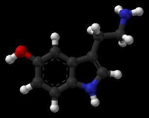 세로토닌. ⓒ 위키백과