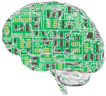 인공지능의 학습방법인 뉴럴 네트워크는 뇌에서 작용하는 뉴런의 여러가지 상호작용에서 아이디어를 얻어서 만들어진 것이다. ⓒ 위키피디아