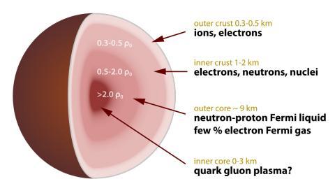 중성자별 단면도 ⓒ Wikipedia / Robert Schulze
