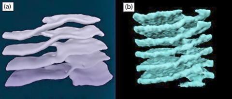 적층 평면이 경사로로 이어진 모습. 세포질(왼쪽)과 중성자별(오른쪽)에서의 모습이 매우 흡사하다 ⓒ ScienceTimes
