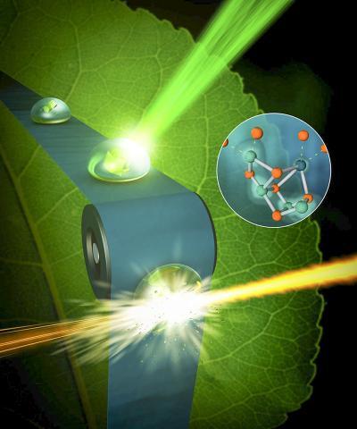 X선 자유 전자 레이저에서 나온 펨토세컨드 X선 펄스가 청록색 세균으로부터 추출해 결정화한 광화학계 Ⅱ 단백질이 포함된 물방울을 가로지르고 있다.  Credit: SLAC National Accelerator Laboratory
