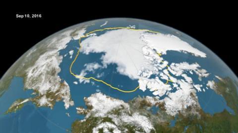 예년의 얼음경계(노란색)과 올해의 얼음경계  ⓒ NOAA