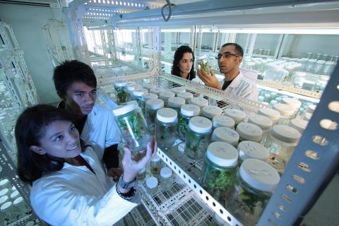 나이든 과학자와 젊은 과학자는 차이가 없다. ⓒ Pixabay