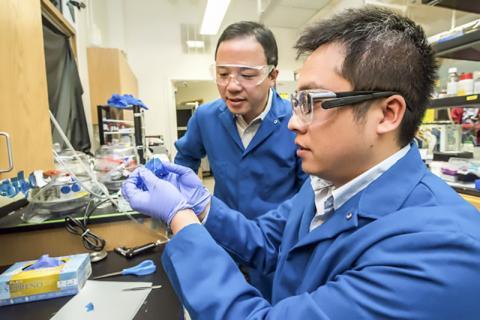 논문 제1저자인 첸 공(Cheng Gong, 오른쪽) 박사와 시니어 저자인 지앙 장(Xiang Zhang) 교수가 접착 테이프를 사용해 크롬 게르마늄 텔루라이드(CGT)의 2차원 플레이크를 벗겨내고 있다. 이들은 '네이처'에 2차원 반 데르 발스 물질의 고유 강자성에 대한 최초의 실험적 발견을 보고했다. Credit: Marilyn Chung/Berkeley Lab