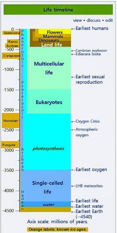 지구상의 생명 출현 시간표. Credit: Wikipedia