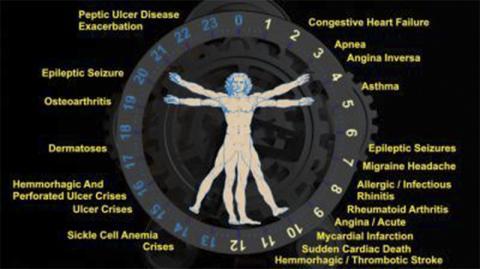 표준시간차가 있는 지역을 오고가며 시간적으로 불규칙한 일을 하게 될 경우 사람의 생체 시계가 불규칙하게 돌아갈 경우 생체 '생물학적 주기의 붕괴' 현상이 일어나 암 발생률이 높아진다는 연구 결과가 나왔다.  ⓒ labspaces