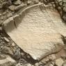 고대 화성의 생명체를 찾아라