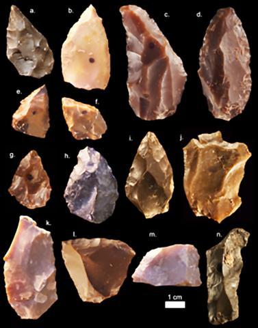 제벨 이루드에서 발견된 30만년 전 중석기 시대 돌 도구들.  Credit : Wikipedia Commons / Mohammed Kamal, MPI EVA Leipzig