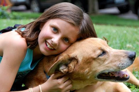 개는 인간에게 없어서는 안될 반려동물이다. ⓒ Pixaby