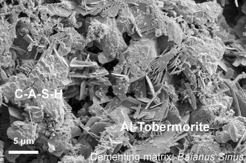 시멘팅 매트릭스의 현미경 사진. 화산재와 석회 및 해수가 혼합될 때 형성되는 울퉁불퉁한 칼슘-알루미늄-규산염-수화물(C-A-S-H) 결합제 물질이 나타나 있다. 알루미늄-토버모라이트 판상 결정이 C-A-S-H 시멘팅 매트릭스 사이에서 성장했다. Credit: Courtesy of Marie Jackson