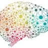 기억력 재생, 약물로 가능하다?
