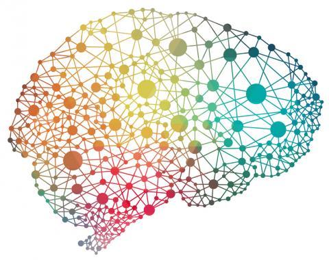 그동안 불가능한 것으로 뇌충격으로 인한 기억력 상실을 다시 회복할 수 있는 약물이 개발되고 있다.  동물실험을 통해 ISRIB에 대한 약물효과가 최초로 확인됐다.  ⓒ td.org