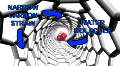 탄소 나노튜브를 통해 물 분자가 이동하는 모습을 표현한 개념도 ⓒ LLNL