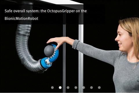 자유롭고 유연하게 움직이는 코끼리의 코와 문어의 강력한 빨판을 결합해 만든 로봇. ⓒhttp://festo.com