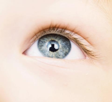 아기들의 얼굴 인식 능력은 선천적으로 타고 나는 것이 아니라 경험으로 형성되는 것이란 연구가 나왔다.  Credit: Image: Getty Images