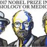 노벨 생리·의학상, '24시간 생체시계' 비밀 연구