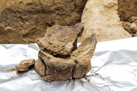 안에 들어있던 잔류물 분석을 위해 준비한 신석기시대 물병 조각. CREDIT: JUDYTA OLSZEWSKI