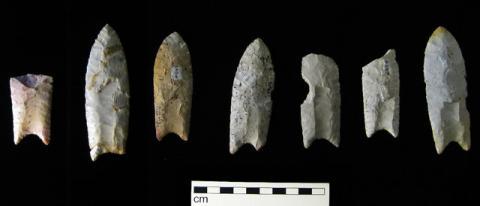 초기 미국 석기문화를 보여주는 클로비스 유물 ⓒ Wikimedia