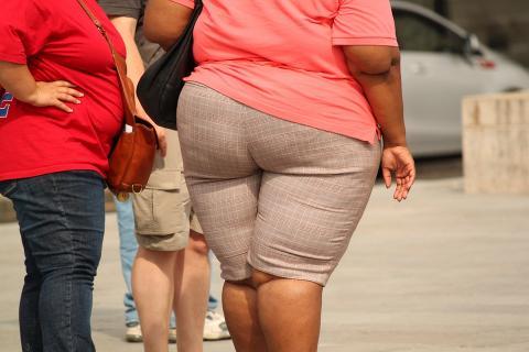어떤 사람은 유전자 때문에 비만이 생긴다 ⓒPixabay