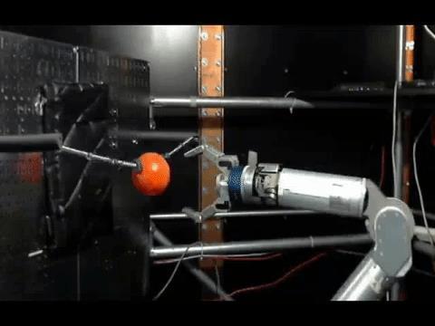 원숭이 뇌에 연결된 로봇팔이 공을 잡는 장면  ⓒ 시카고대