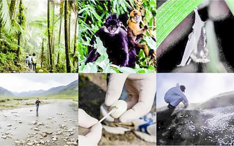 '지구 미생물군 유전체 프로젝트' 연구자들은 지구촌 곳곳에서 미생물군 포본을 수집해 방대한 데이터베이스를 만들었다.