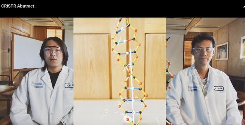 새로 개발한 Cas9 기반 유전자 가위는 이중나선 절단을 하지 않고 후생유전학적으로 유전자를 발현시켜 돌연변이 위험을 크게 줄였다.  CREDIT: Salk Institute