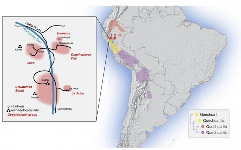 케추아 어군이 분포한 개략적인 지역. 빨간색 점 1은 아마존 지역(차차포야스 시, 루야, 후안카스, 우트쿠밤바 사우스, 라 할까)을 표시한다. 빨간 점 2는 산 마르틴 지역(라마스, 와이쿠 인근). 삽입된 그림은 아마존 지역 위치를 확대한 그림. CREDIT: Barbieri et al. Enclaves of genetic diversity resisted Inca impacts on population history. Scientific Reports, DOI: 10.1038/s41598-017-17728-w.
